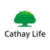 CATHAY LIFE MỸ ĐÌNH
