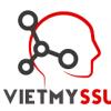 Công Ty TNHH Việt Mỹ SSU
